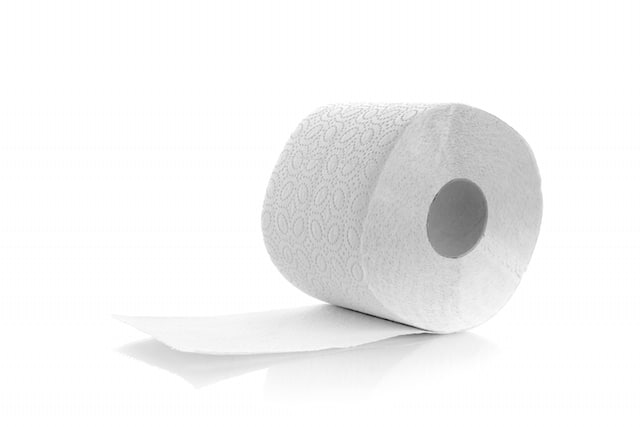 South Korea Fact 12 Toilet Paper Warms the House