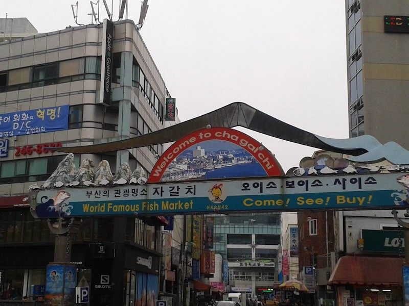 Jagalchi Market in Busan South Korea