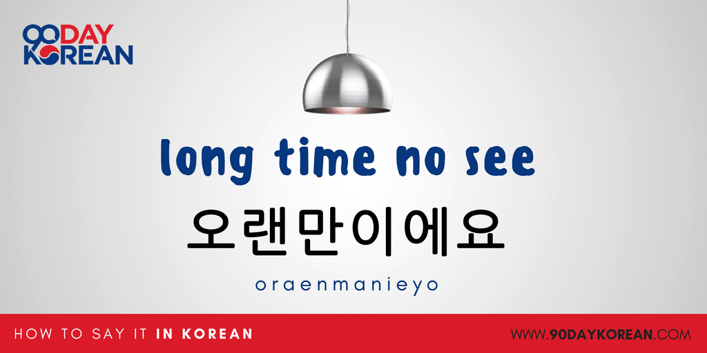 How to Say Hello in Korean Small In-post - bonus long time no see