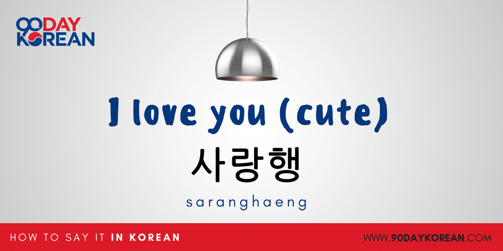 How to Say I love you in Korean - I love you cute
