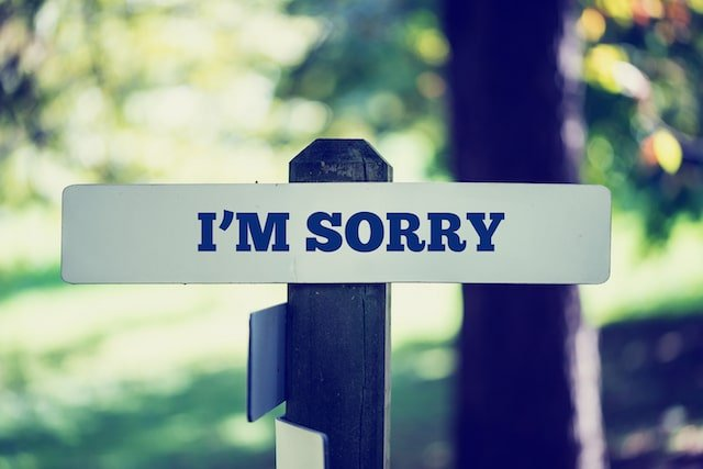I'm Sorry in a sentence