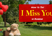 How to Say I Miss You in Korean Main