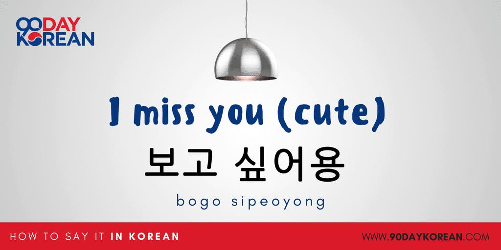 How to Say I miss you in Korean - aegyo