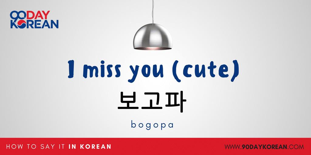 How to Say I miss you in Korean - aegyo2