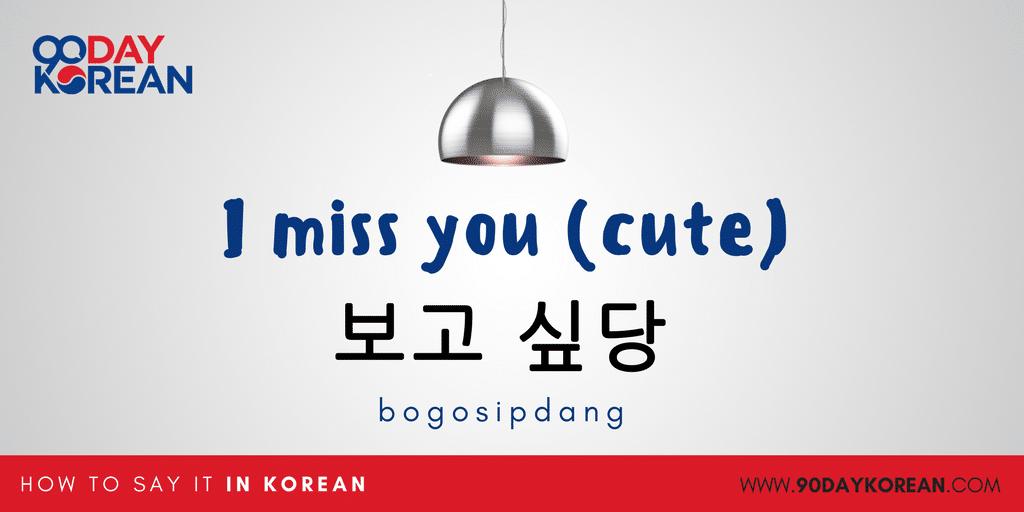How to Say I miss you in Korean - aegyo3