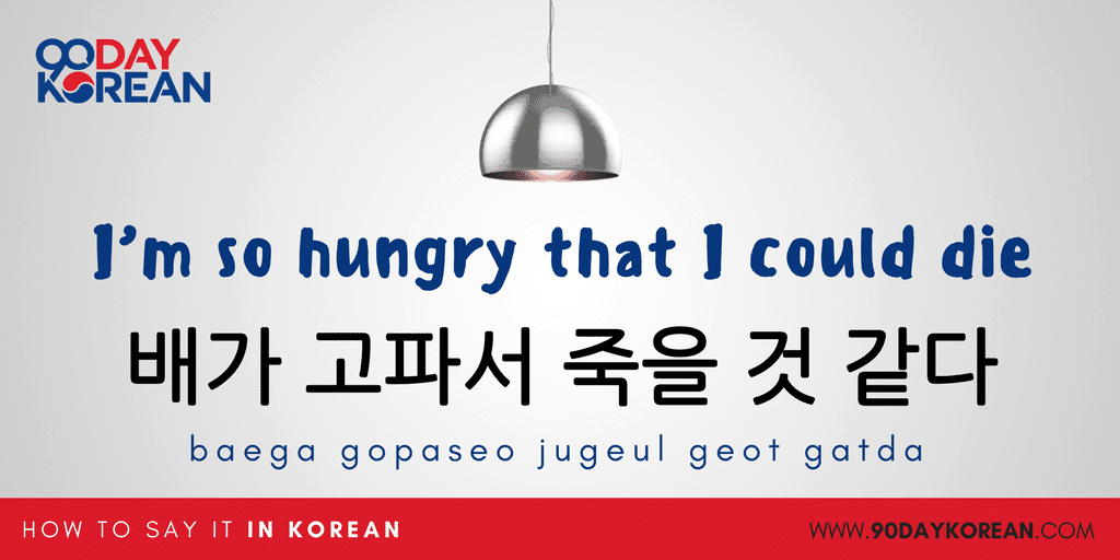 How to Say I'm Hungry in Korean - I'm so hungry that I could die