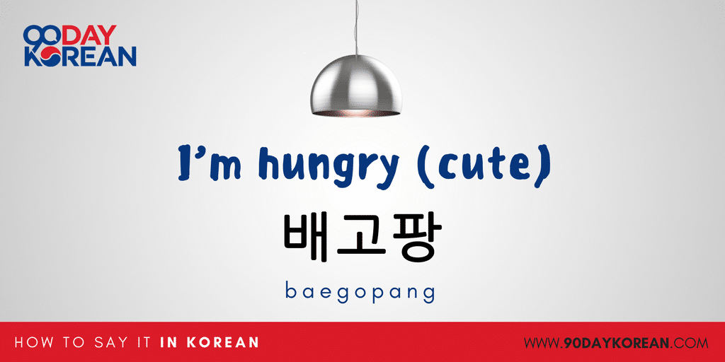 How to Say I'm Hungry in Korean - cute
