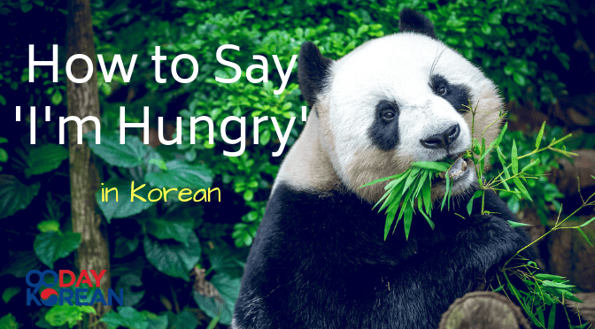 Panda eating leaves with a jungle in the background