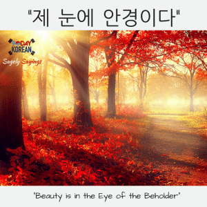 한국어 속담 Korean Proverb - beauty is in the eye of the beholder