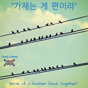 birds of a feather 한국어 속담 Korean Proverb