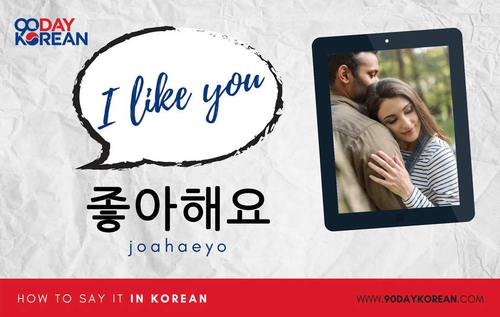 How to Say I Like You in Korean standard