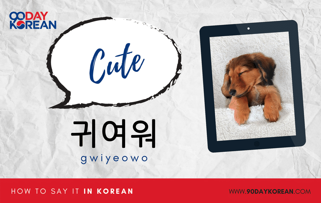 How to Say cute in Korean informal