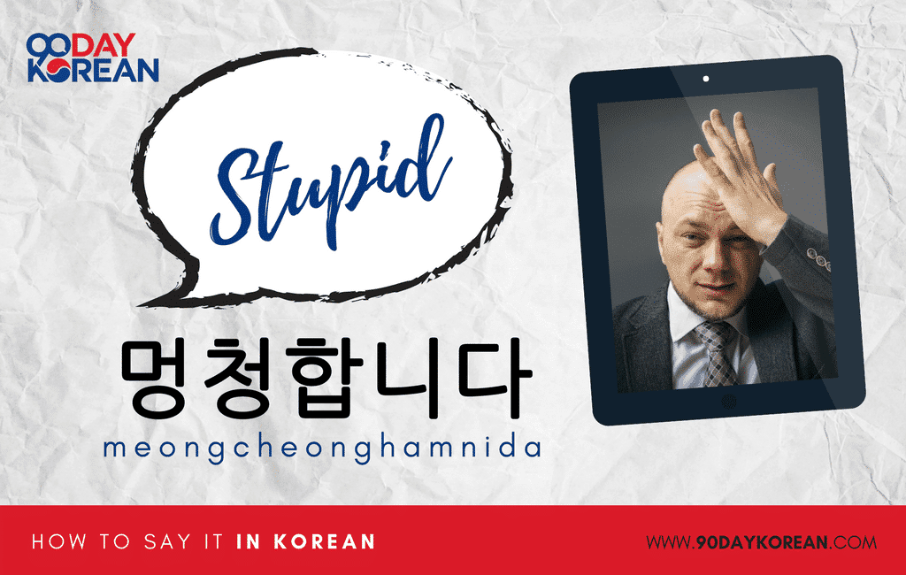 How to Say Stupid in Korean formal