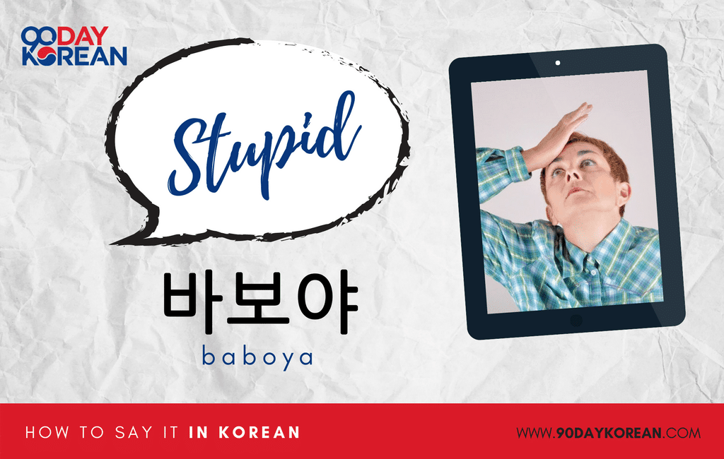 How to Say Stupid in Korean informal