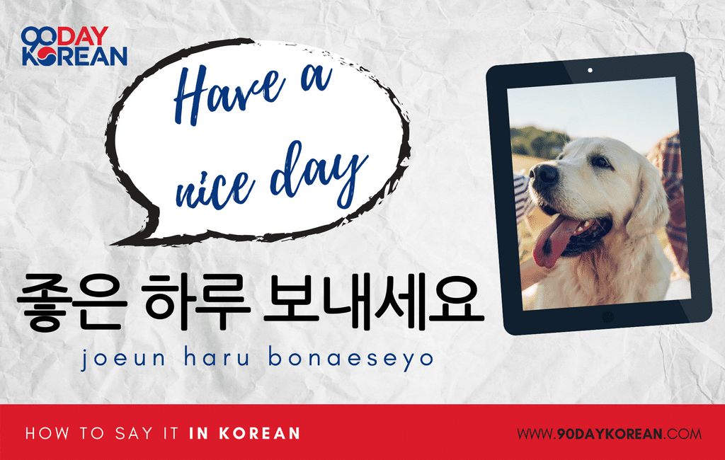 How to Say Have a Nice Day in Korean standard