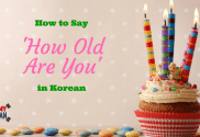 How to Say How Old Are You in Korean