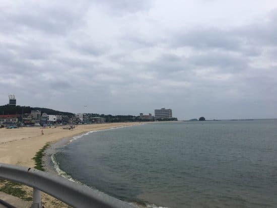 Picture of a beach with few buildings from a far on a gloomy day