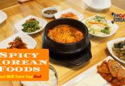 Spicy Korean Food