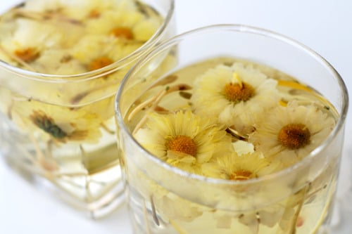 Chrysanthemum Tea 국화차 in  a clear glass