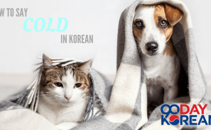 How To Say 'Cold' In Korean