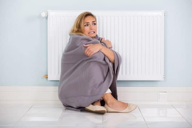 Young Cold Woman Wrapped In Blanket