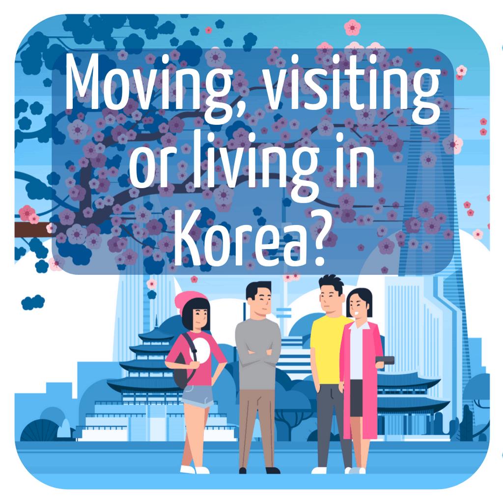 4 koreans under a cherry blossom tree